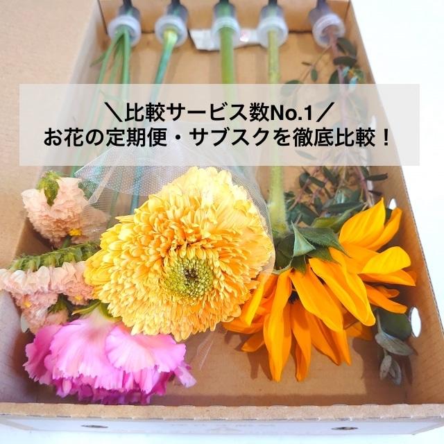 お花の定期便比較「ハナタク」のアイキャッチ
